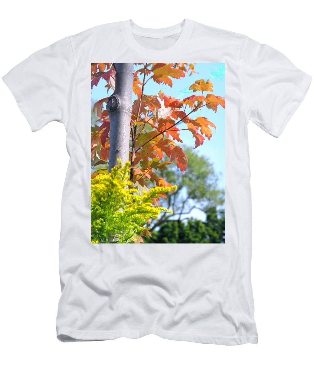 Maple Men's T-Shirt (Athletic Fit) featuring the photograph Changing Leaves by Ian MacDonald