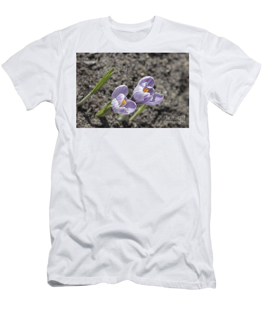 Larissa Antonova. Charming Ground Force By Larissa Antonova. Crocus Men's T-Shirt (Athletic Fit) featuring the photograph Charming Ground Force. by Larissa Antonova