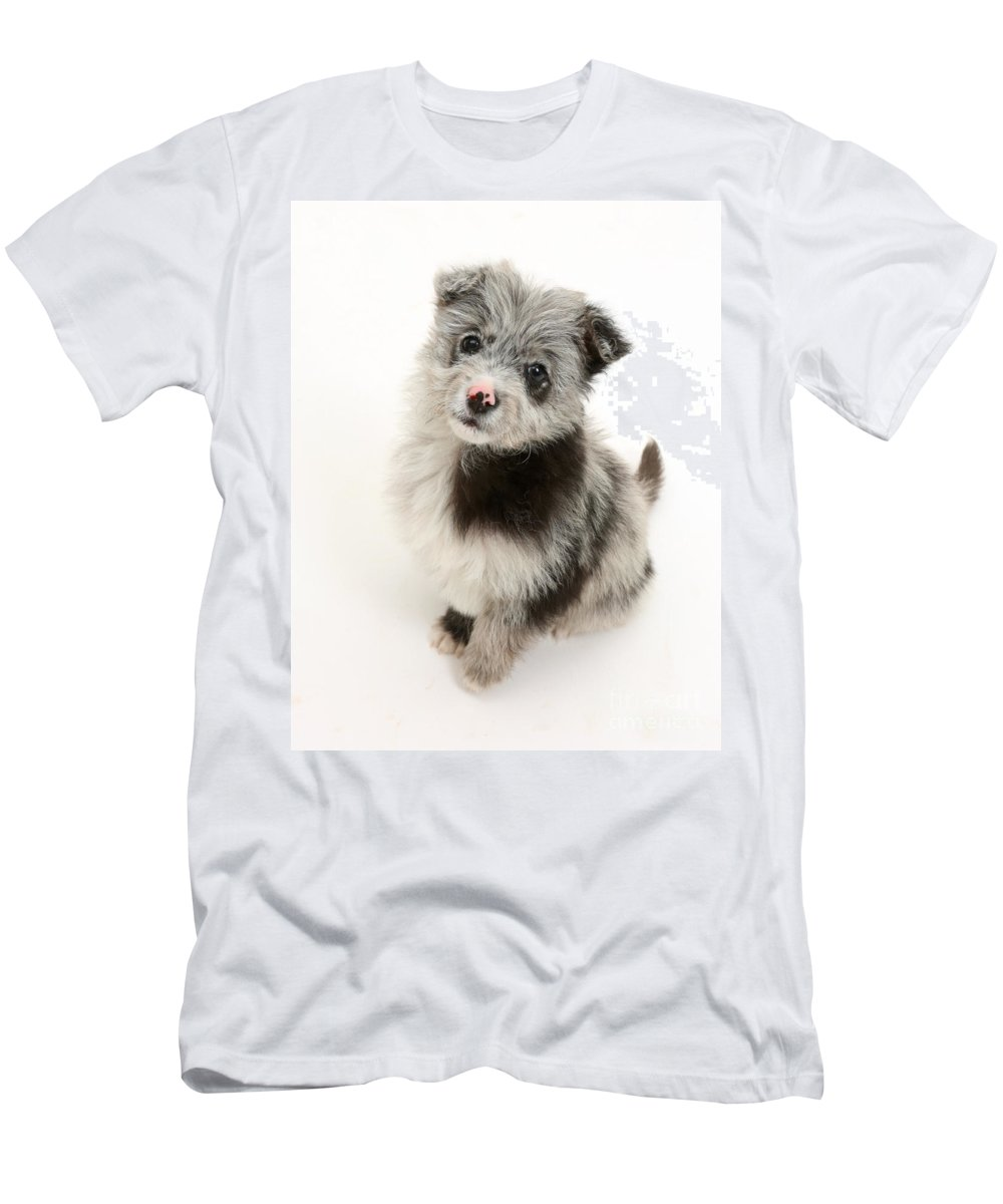 Nature Men's T-Shirt (Athletic Fit) featuring the photograph Chipoo Puppy by Mark Taylor