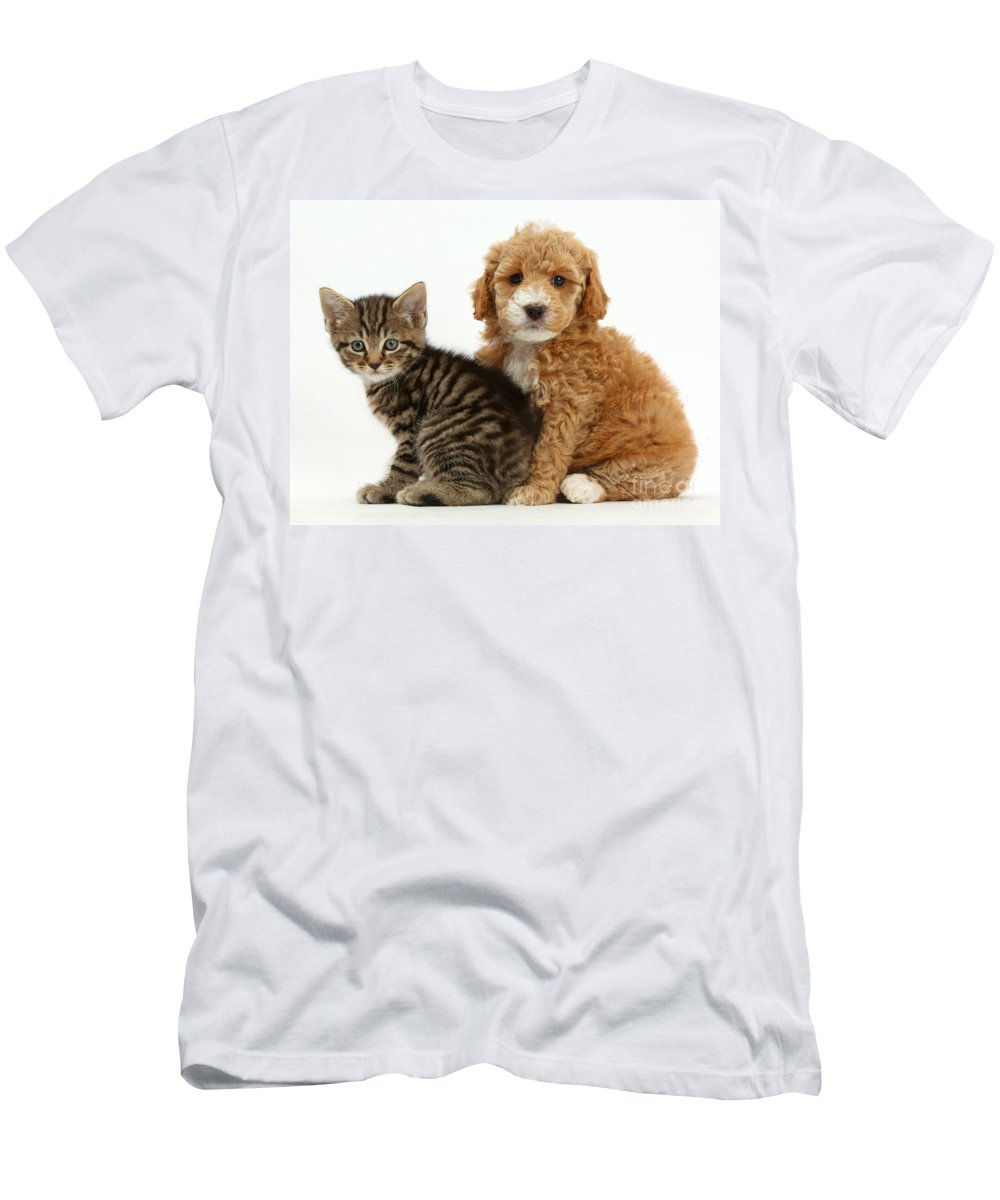 Nature Men's T-Shirt (Athletic Fit) featuring the photograph Cockapoo Puppy And Tabby Kitten by Mark Taylor