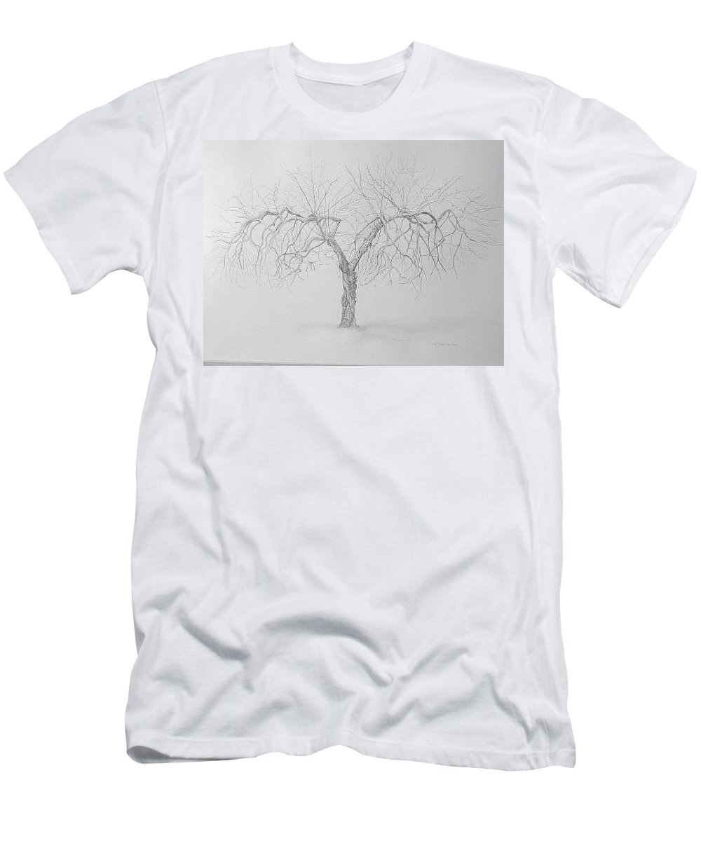 Cortland Apple Tree T-Shirt featuring the drawing Cortland Apple by Leah Tomaino
