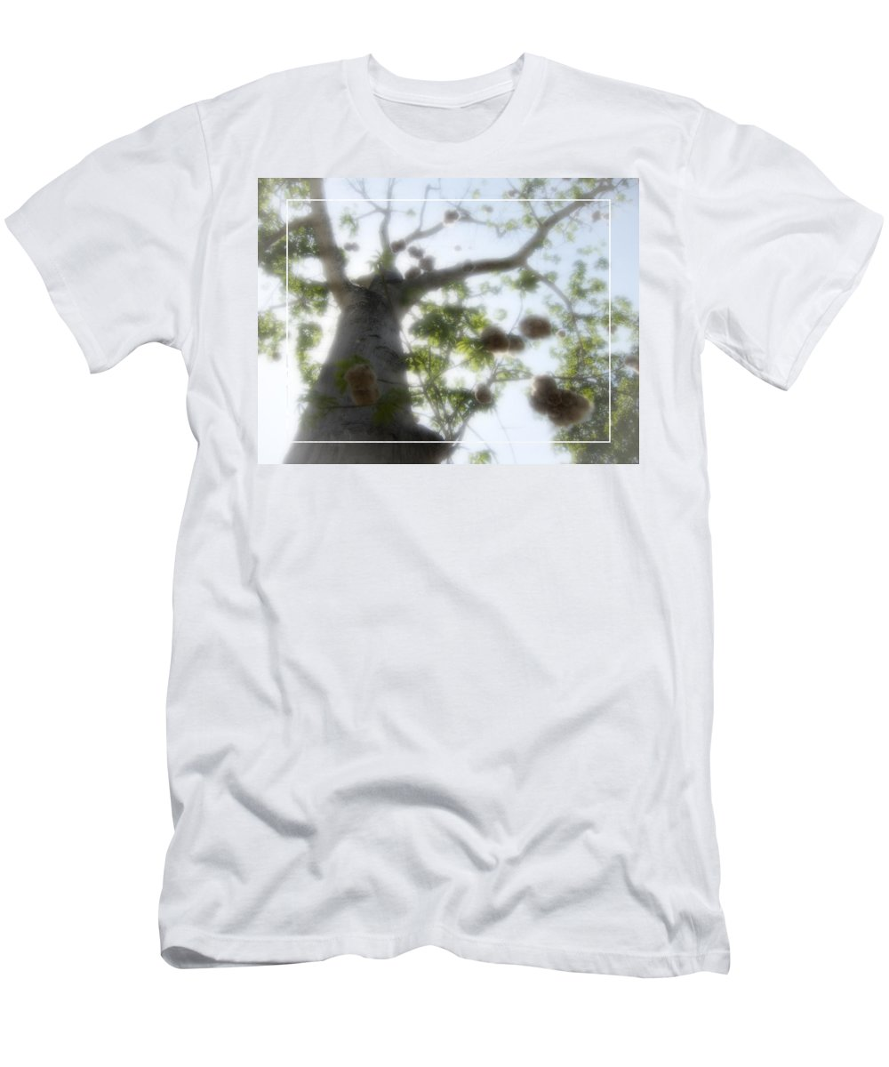 Kapoc Men's T-Shirt (Athletic Fit) featuring the photograph Cotton Ball Tree by Douglas Barnard