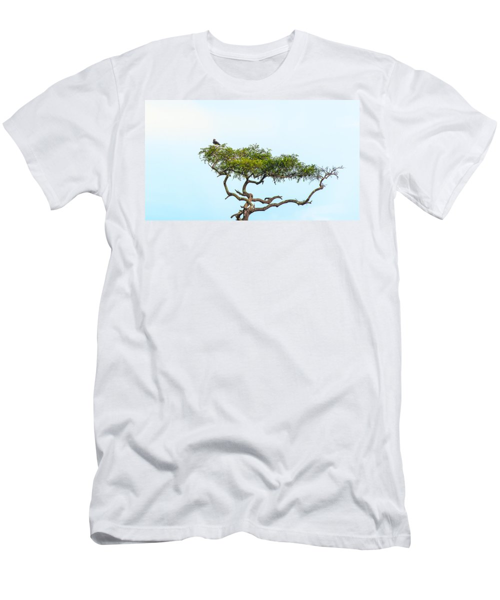 Birds Men's T-Shirt (Athletic Fit) featuring the photograph Crested Snake Eagle by Patrick Kain