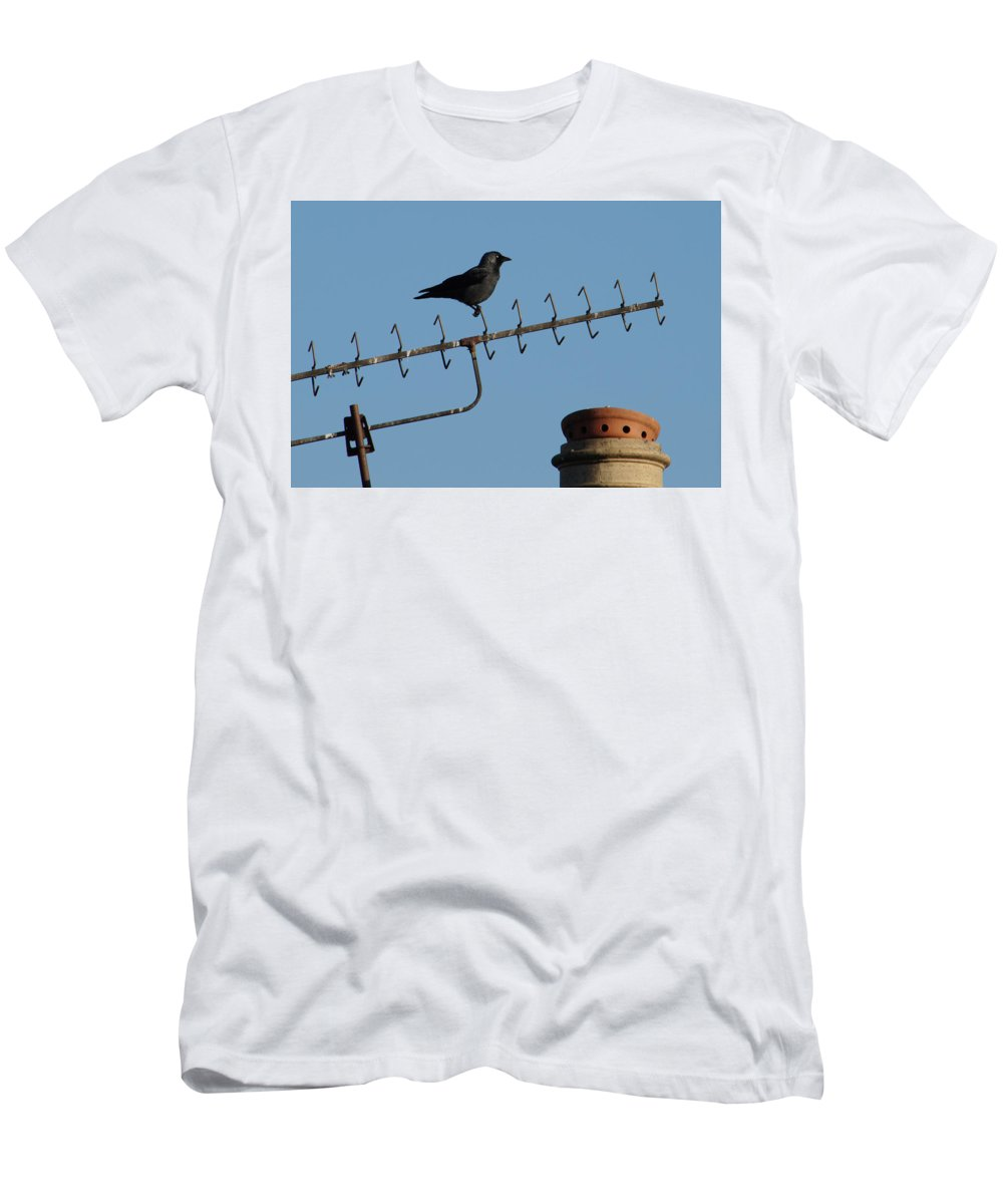 Bird Men's T-Shirt (Athletic Fit) featuring the photograph Crow On Aerial by Adrian Wale