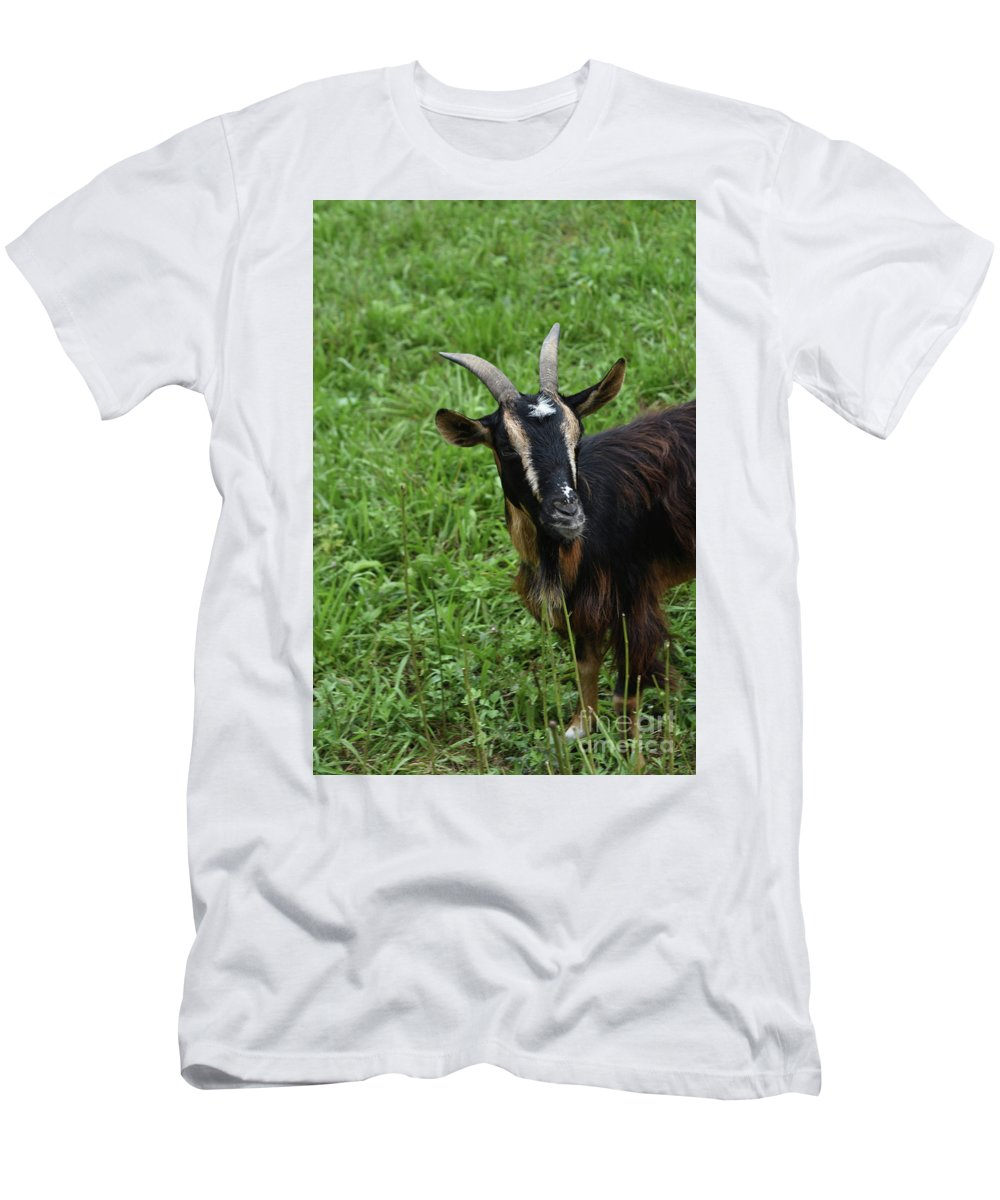 Goat Men's T-Shirt (Athletic Fit) featuring the photograph Curious Goat With Very Long Shaggy Fur by DejaVu Designs