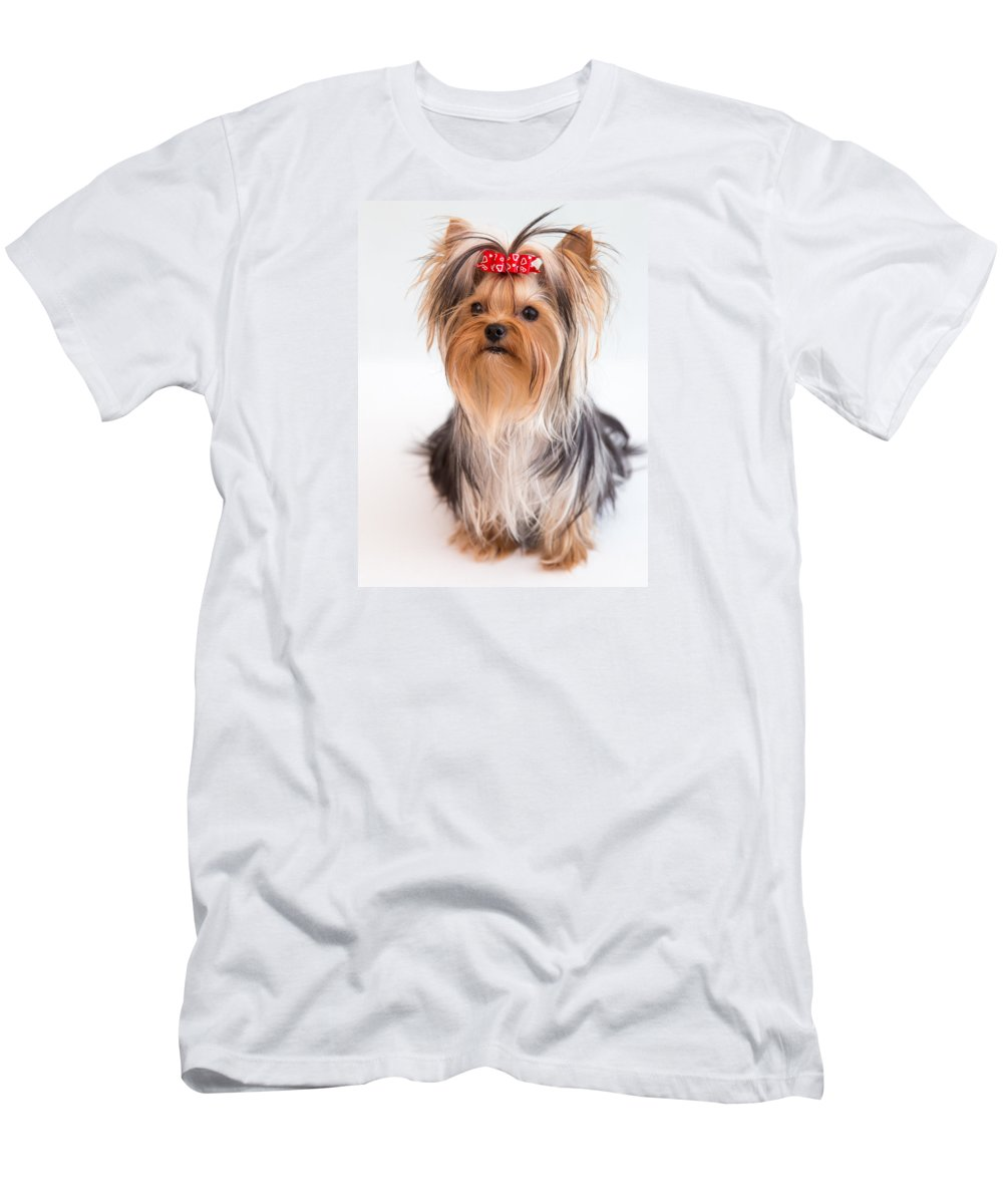 Cute Yorkie Puppy With Red Bow Men's T-Shirt (Athletic Fit) featuring the photograph Cute Yorkie Puppy With Red Bow by Yana Reint