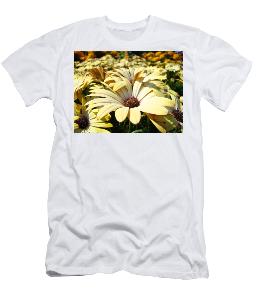 Daisy Men's T-Shirt (Athletic Fit) featuring the photograph Daisies Flowers Landscape Art Prints Daisy Floral Baslee Troutman by Baslee Troutman