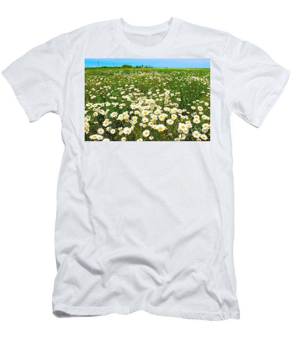 Photography Men's T-Shirt (Athletic Fit) featuring the photograph Daisy Field by Anthony Djordjevic