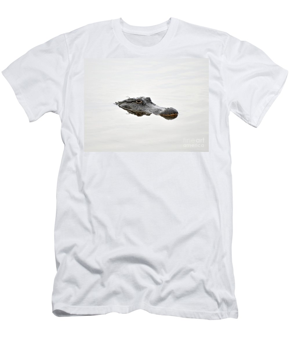 American Alligator Men's T-Shirt (Athletic Fit) featuring the photograph Daring Damselfly by Al Powell Photography USA