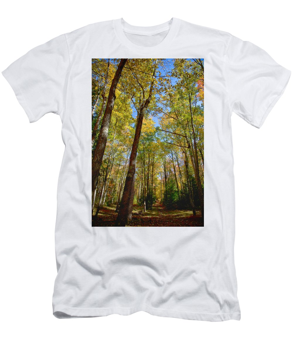 Autumn Men's T-Shirt (Athletic Fit) featuring the photograph Deep Woods by Hugh Smith