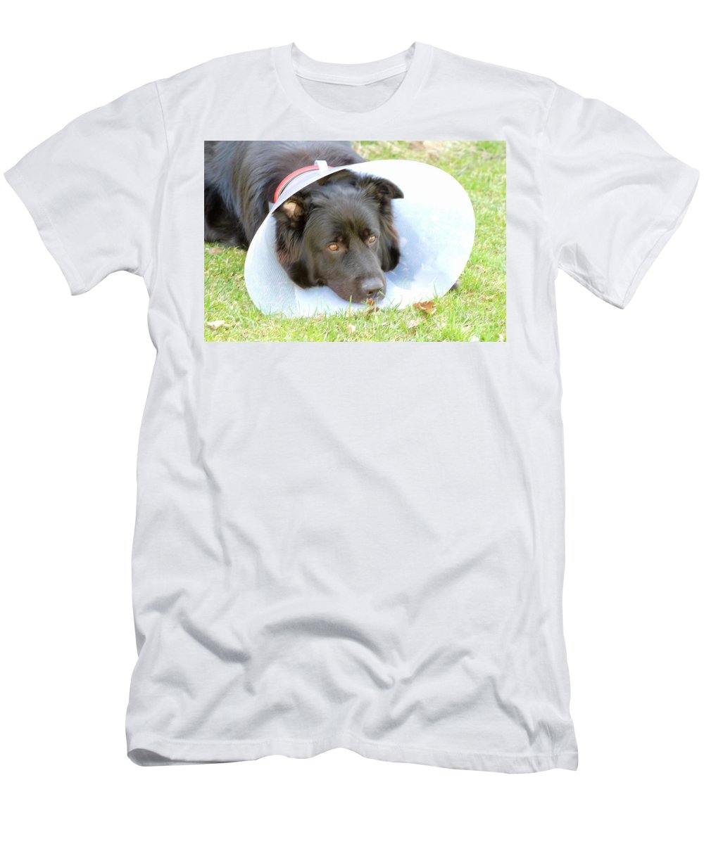 Dog Men's T-Shirt (Athletic Fit) featuring the photograph Depressed Dog by Esko Lindell