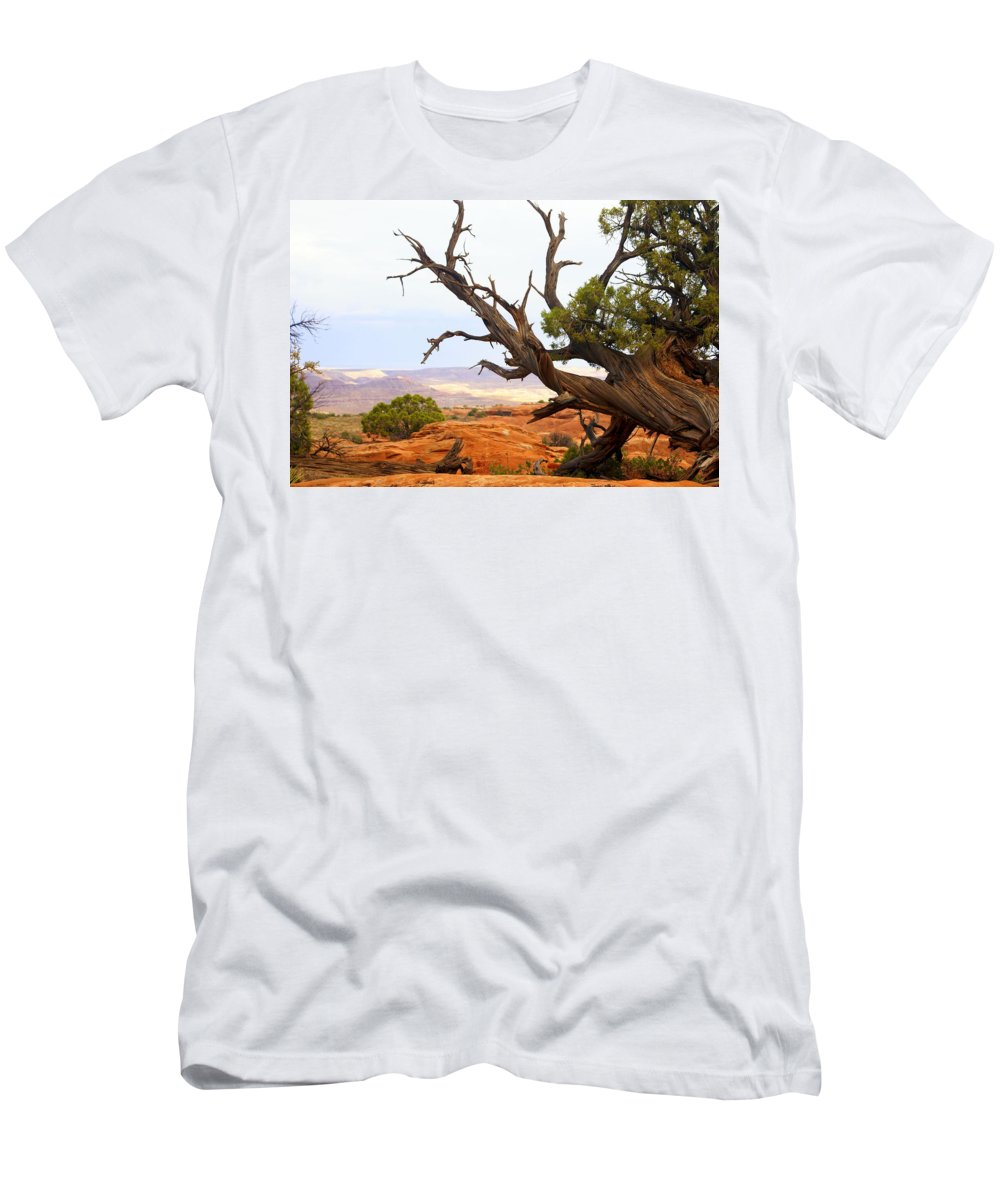 Southwest Art Men's T-Shirt (Athletic Fit) featuring the photograph Devils Garden 2 by Marty Koch