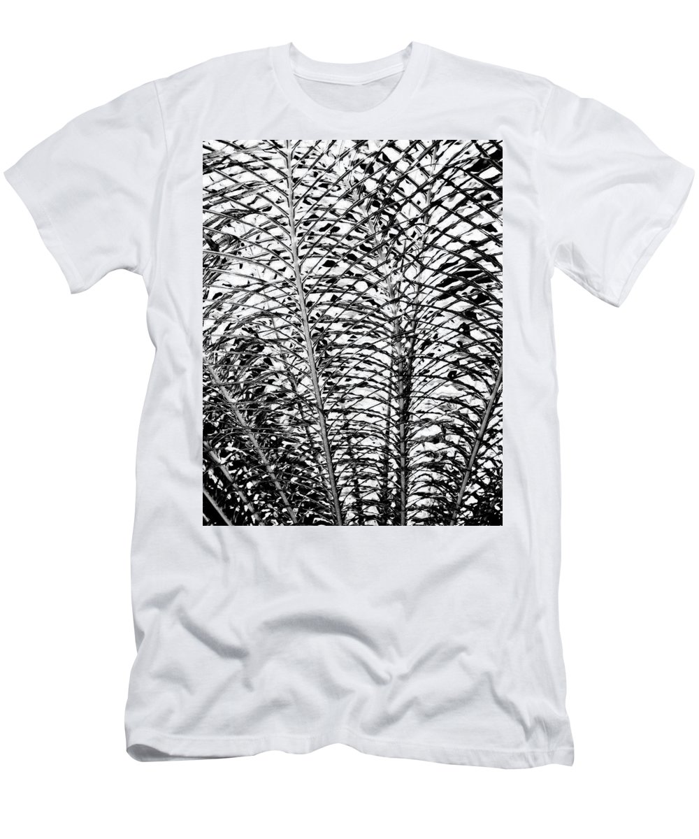Fern Men's T-Shirt (Athletic Fit) featuring the photograph Diffusion by William Dey