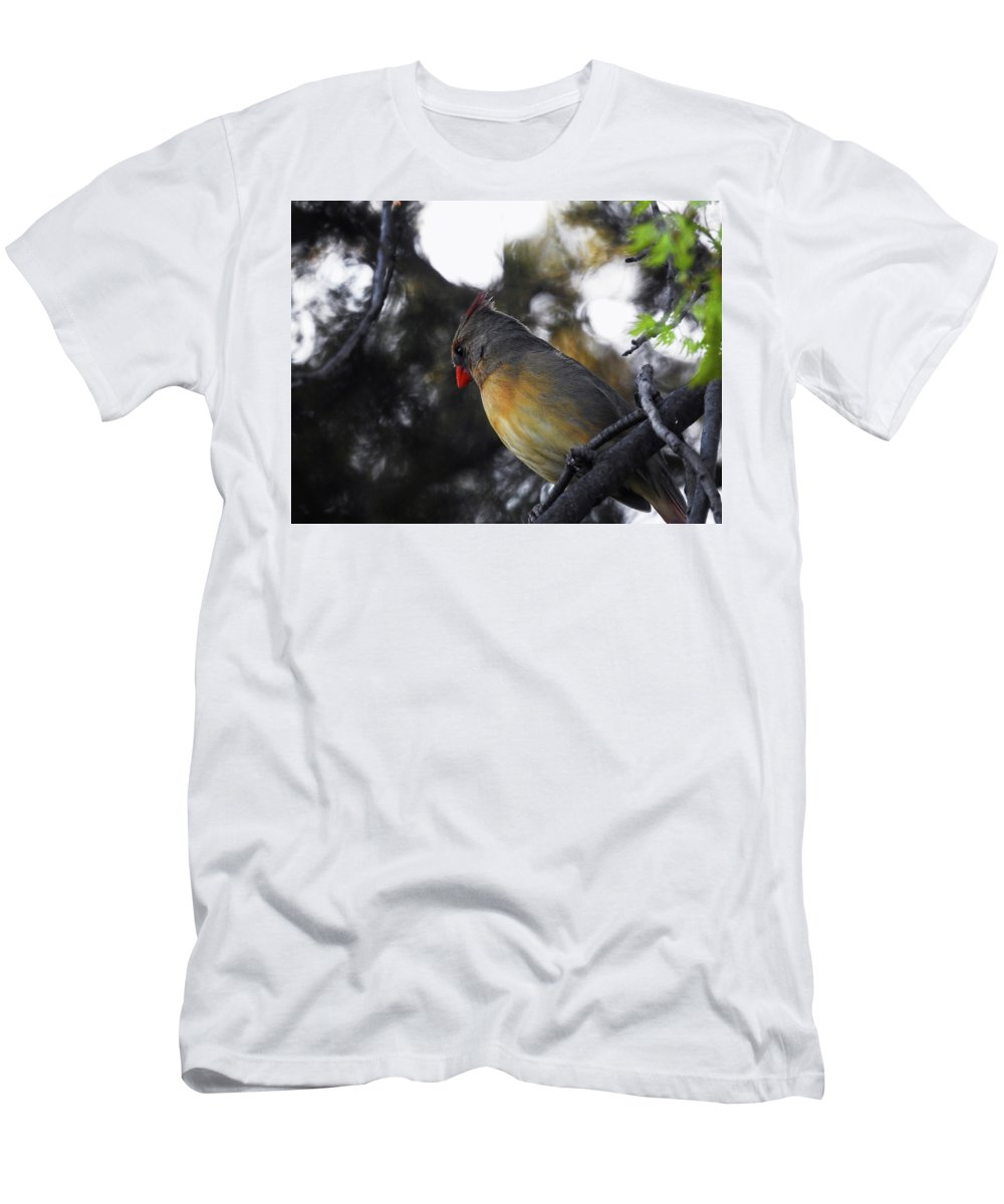 T-Shirt featuring the photograph Distracted by Tony Umana