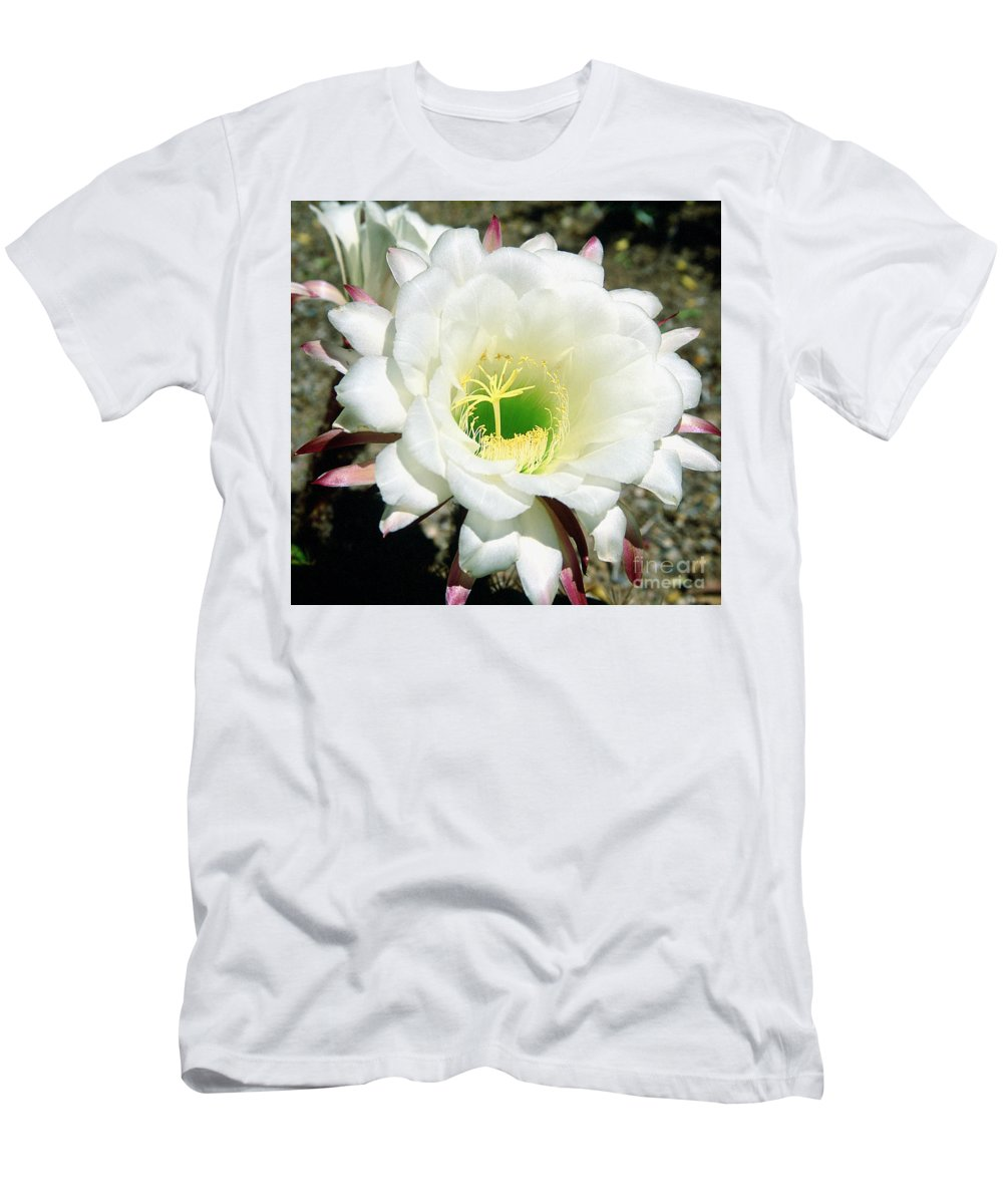 Wildflowers Men's T-Shirt (Athletic Fit) featuring the photograph Easter Lily Cactus Flower by Kathy McClure