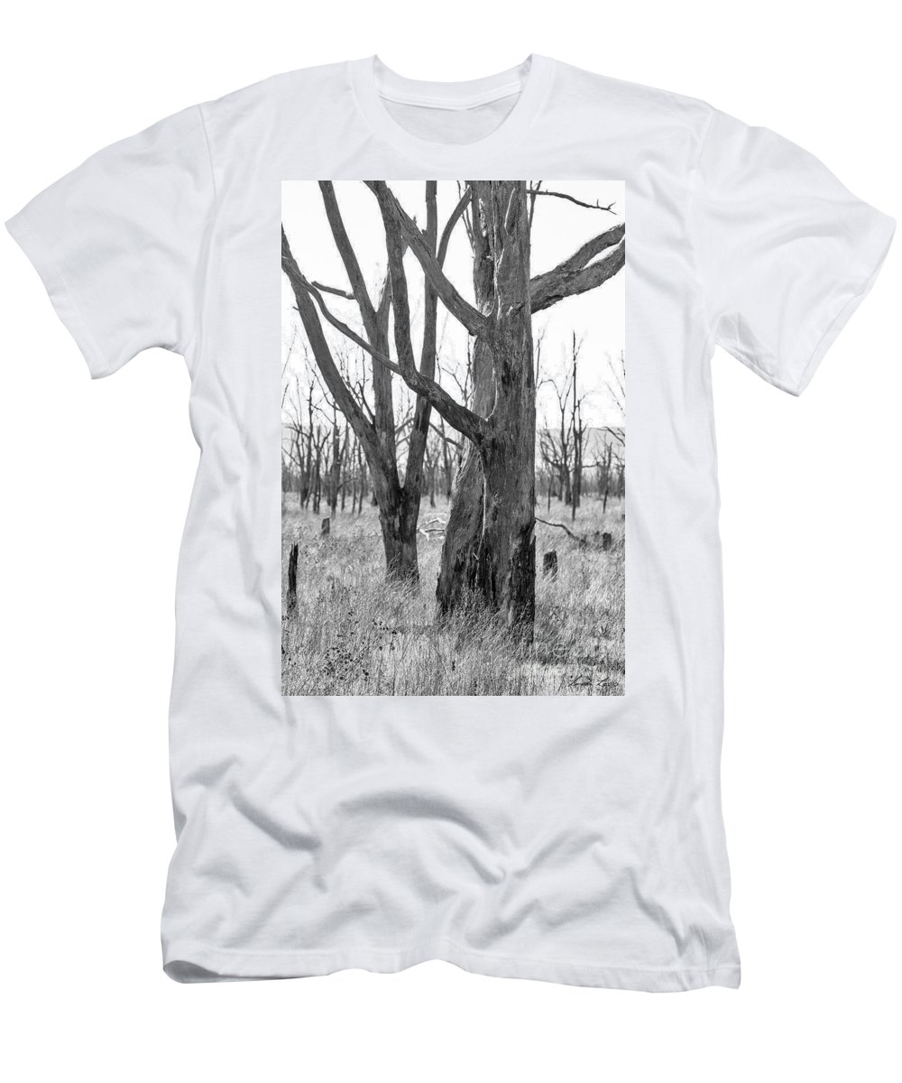 Trees Men's T-Shirt (Athletic Fit) featuring the photograph Echoes Of The Past by Linda Lees