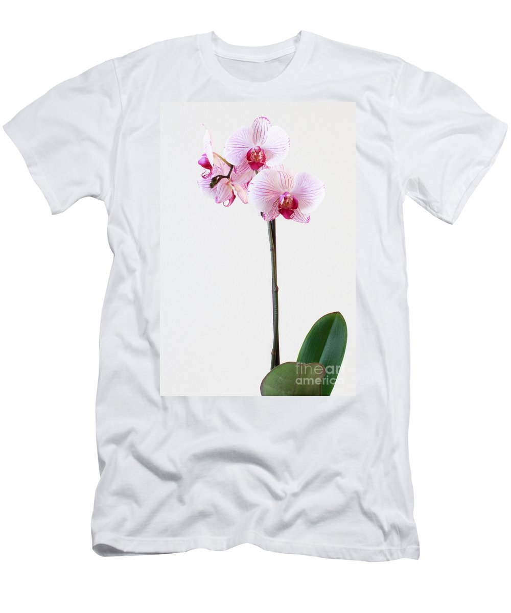 Flowers Men's T-Shirt (Athletic Fit) featuring the photograph Elegant Orchid by Anita Oakley