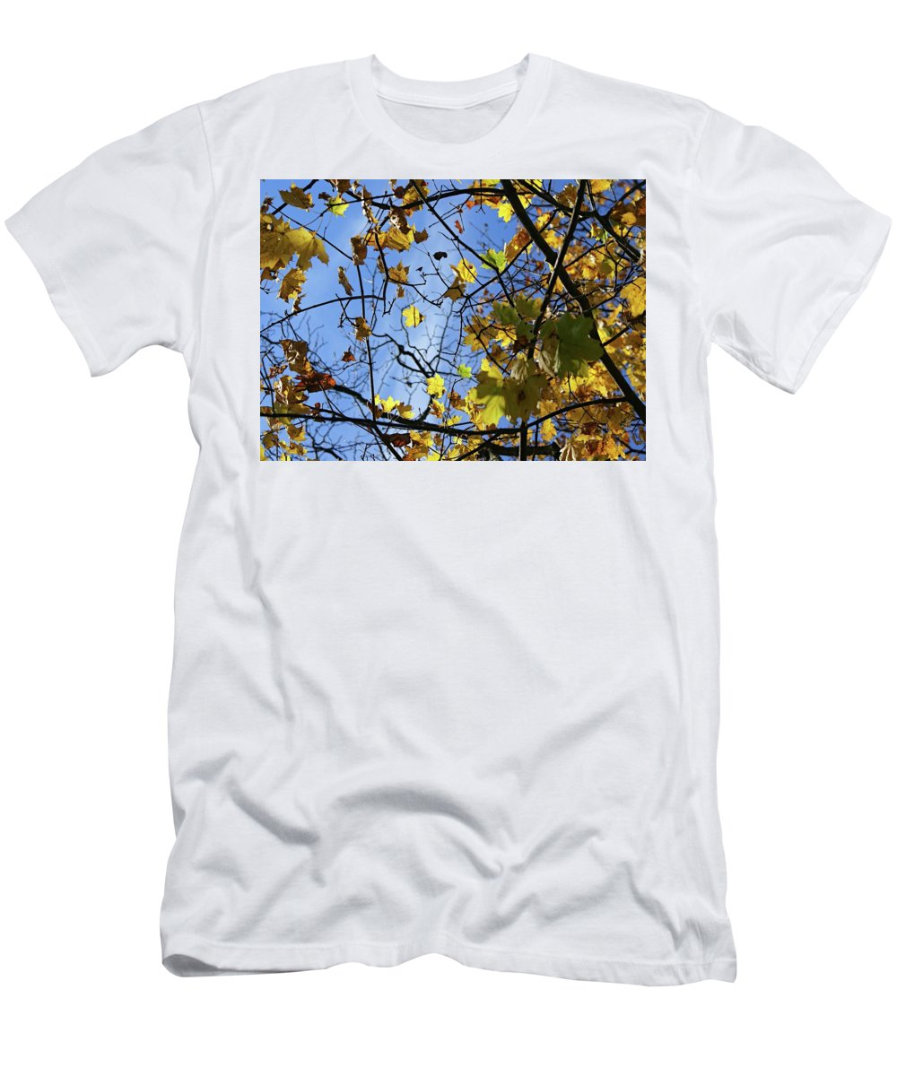 Blue Men's T-Shirt (Athletic Fit) featuring the photograph Fall by Amanda Camarata