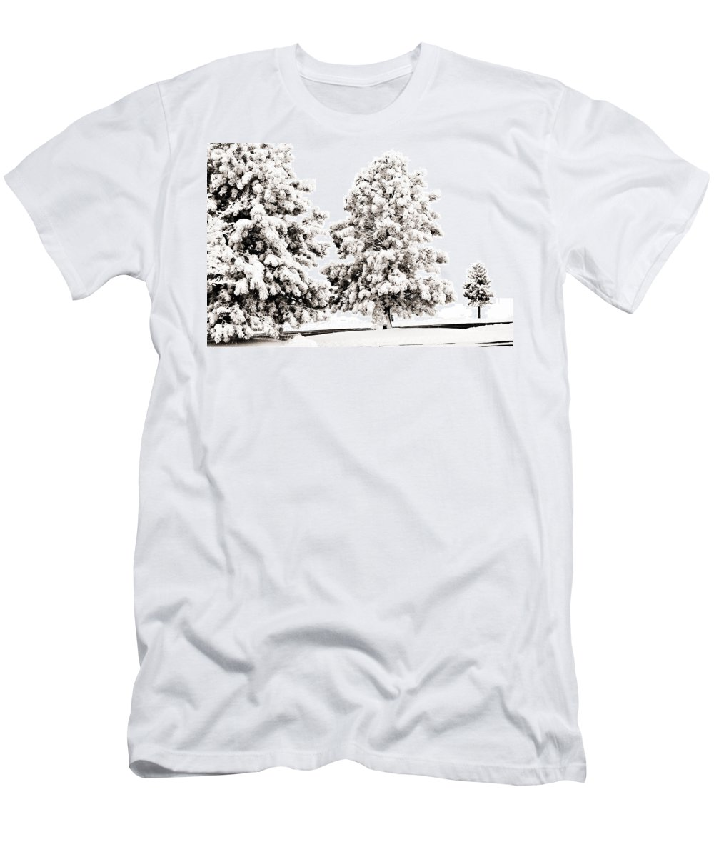 Trees Men's T-Shirt (Athletic Fit) featuring the photograph Family Of Trees by Marilyn Hunt