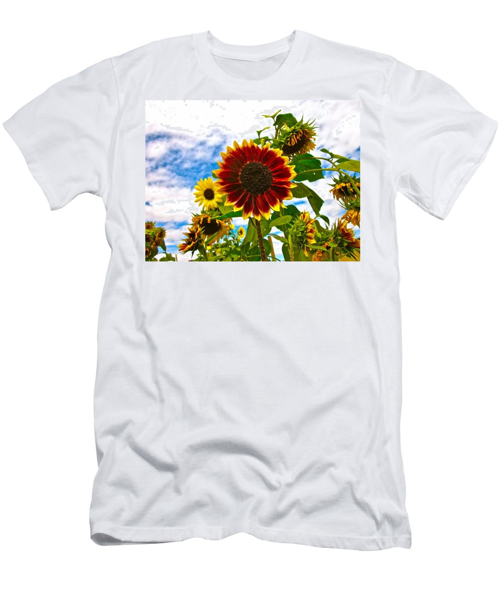 Sunflower Photograph Men's T-Shirt (Athletic Fit) featuring the photograph Field Day by Gwyn Newcombe