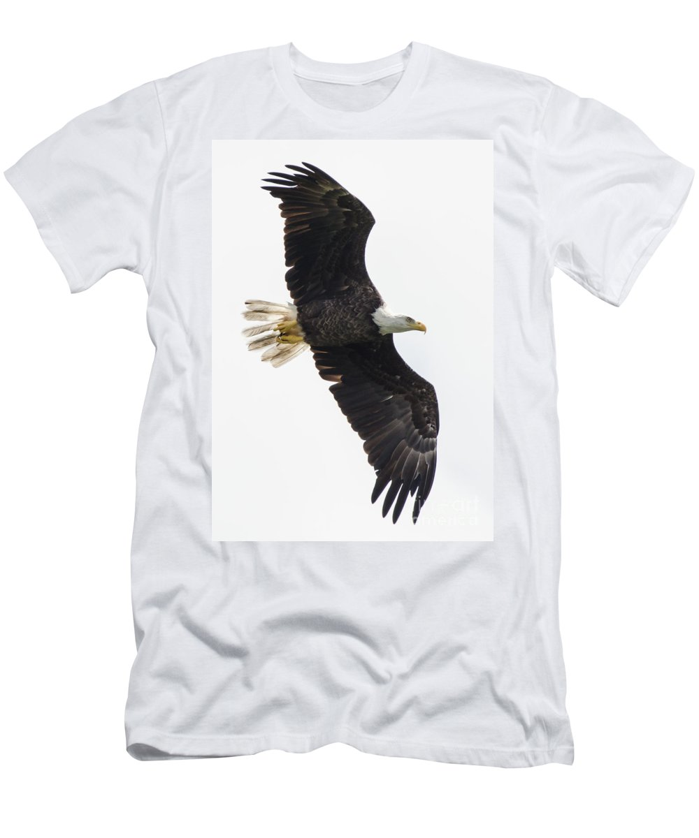 Bald Eagle Men's T-Shirt (Athletic Fit) featuring the photograph Flyby by Samuel Jokich