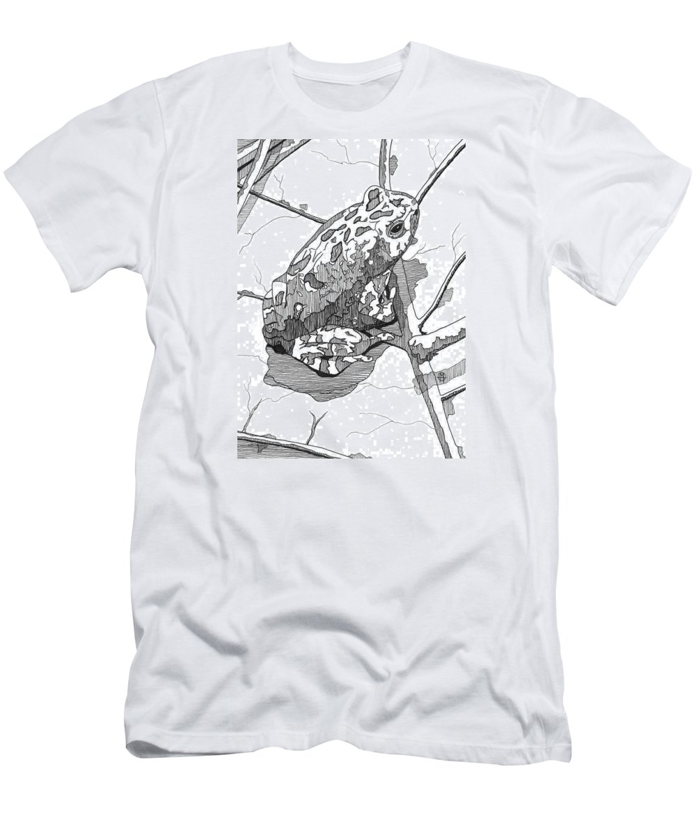 Frog Men's T-Shirt (Athletic Fit) featuring the drawing Oak Toad On A Leaf by Matthew Howard