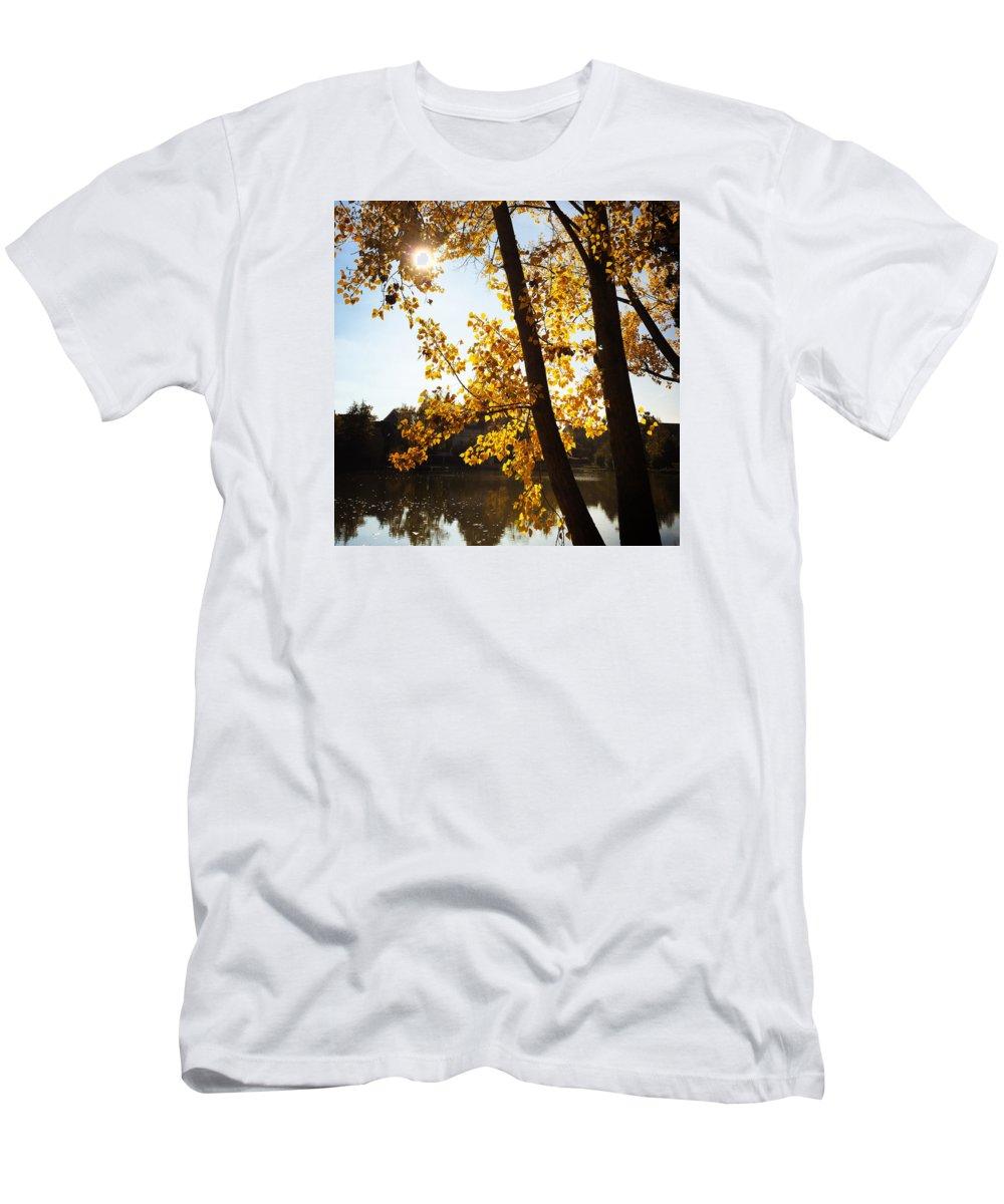 Tree T-Shirt featuring the photograph Golden trees in autumn Sindelfingen Germany by Matthias Hauser