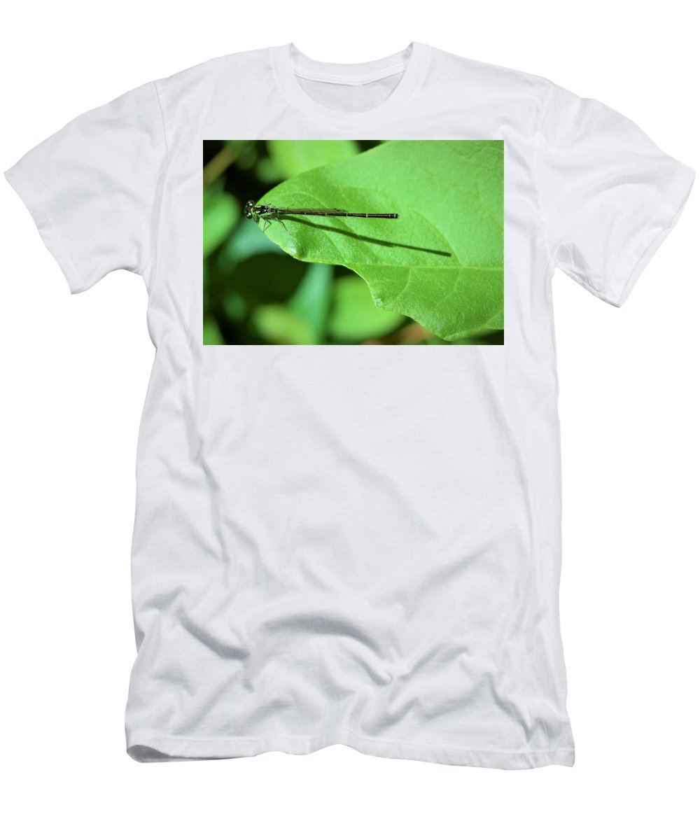 Dragonfly Men's T-Shirt (Athletic Fit) featuring the photograph Green Dragon by Cassandra Dice
