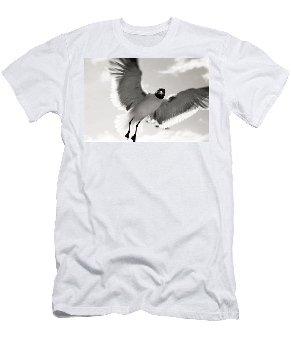 Seagull Men's T-Shirt (Athletic Fit) featuring the photograph Gull In Flight 2 by Marilyn Hunt