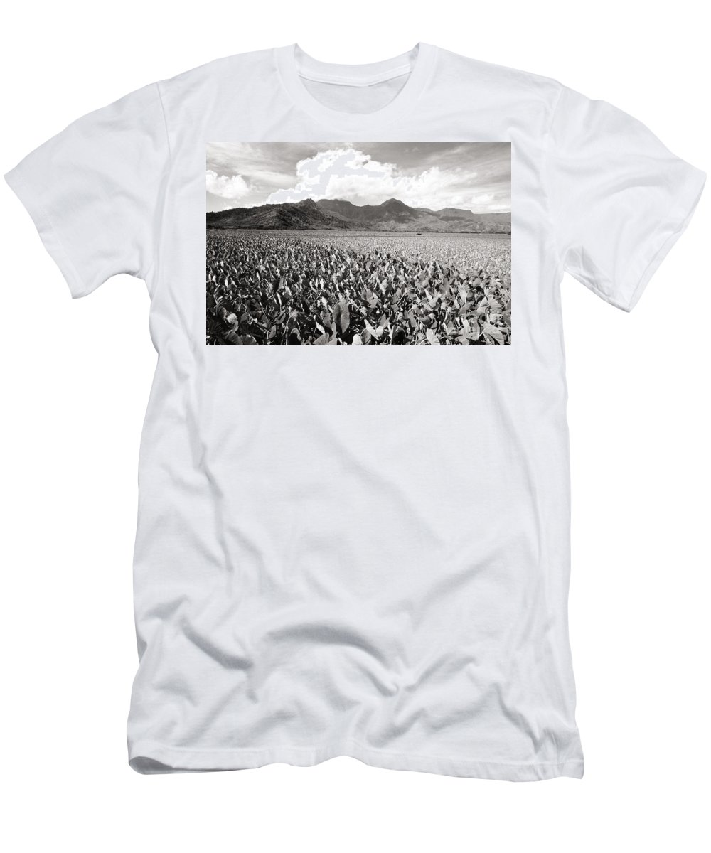 Afternoon Men's T-Shirt (Athletic Fit) featuring the photograph Hanalei Taro Fields by Bob Abraham - Printscapes