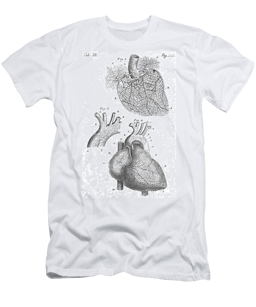 Historic Men's T-Shirt (Athletic Fit) featuring the photograph Heart Anatomy, Illustration, 1703 by Wellcome Images