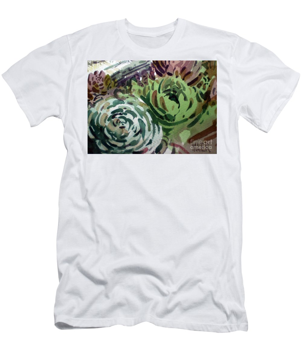 Succulent Plants Men's T-Shirt (Athletic Fit) featuring the painting Hen And Chicks by Donald Maier