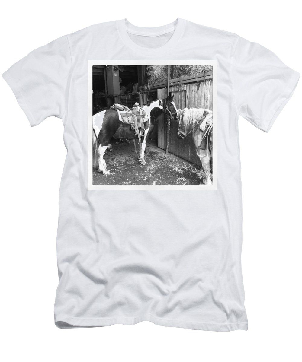 Horses Men's T-Shirt (Athletic Fit) featuring the photograph Horses In The Barn by Christina McNee-Geiger