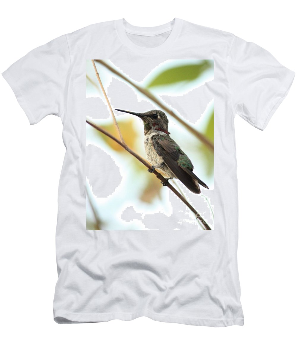 Hummingbird Men's T-Shirt (Athletic Fit) featuring the photograph Hummingbird Between Branches by Carol Groenen