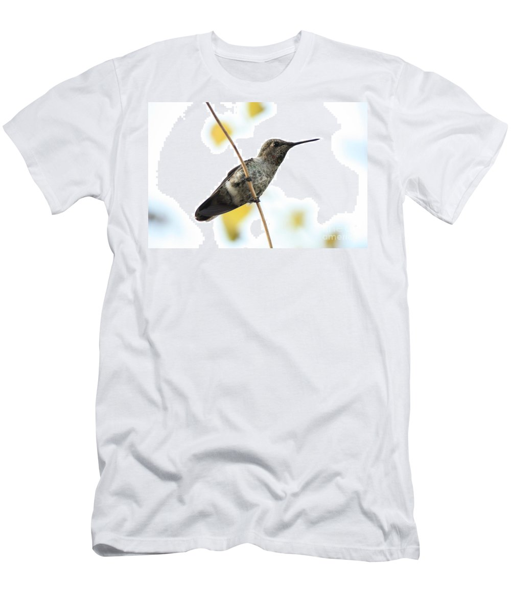 Hummingbird Men's T-Shirt (Athletic Fit) featuring the photograph Hummingbird On Tightrope by Carol Groenen