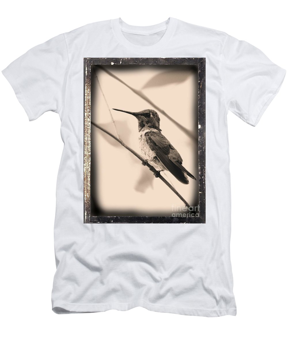 Hummingbird Men's T-Shirt (Athletic Fit) featuring the photograph Hummingbird With Old-fashioned Frame 3 by Carol Groenen