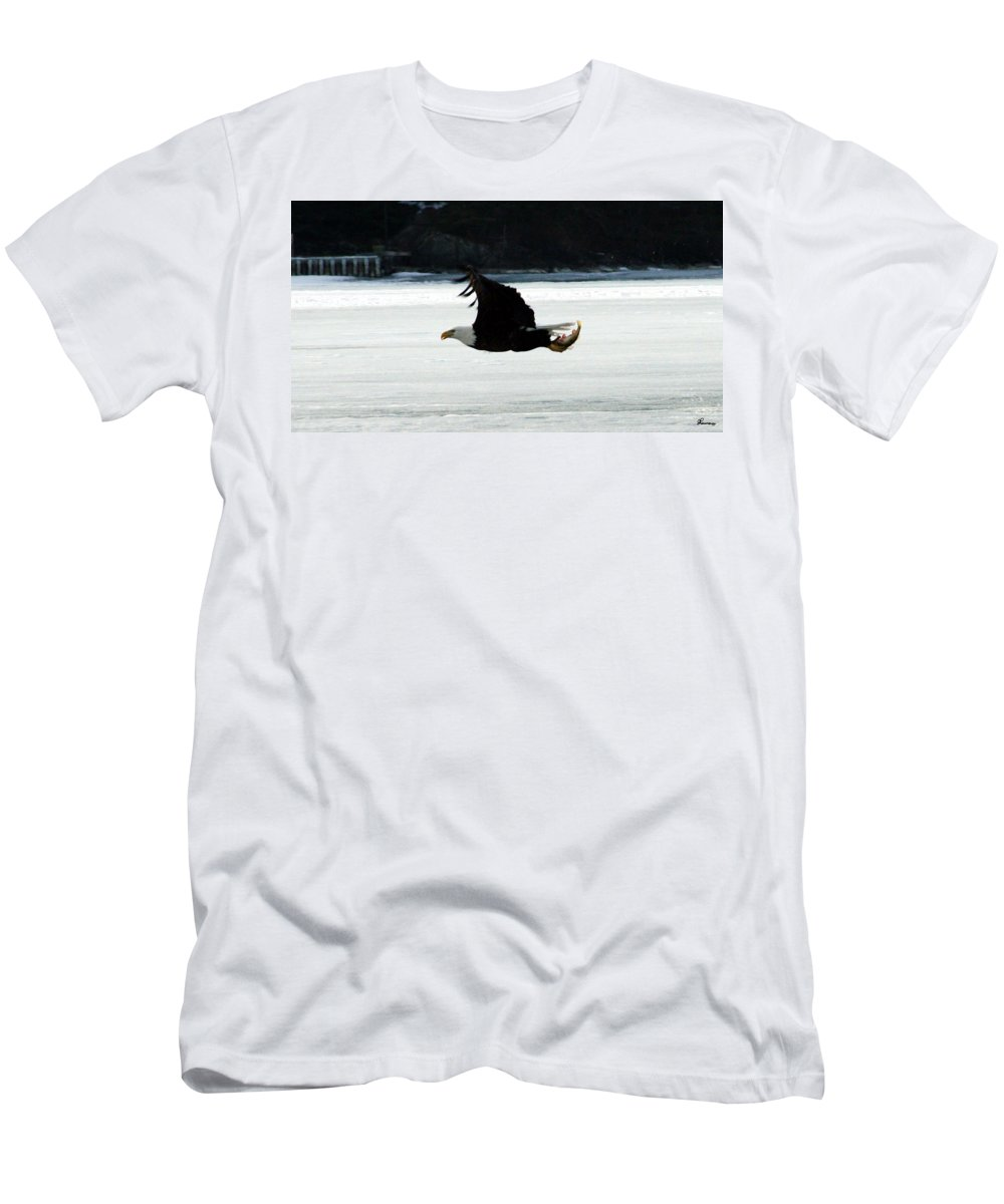 American Eagle Bird Flying Wings Fish Nature Wild Animal Men's T-Shirt (Athletic Fit) featuring the photograph Hungry Eagle by Andrea Lawrence