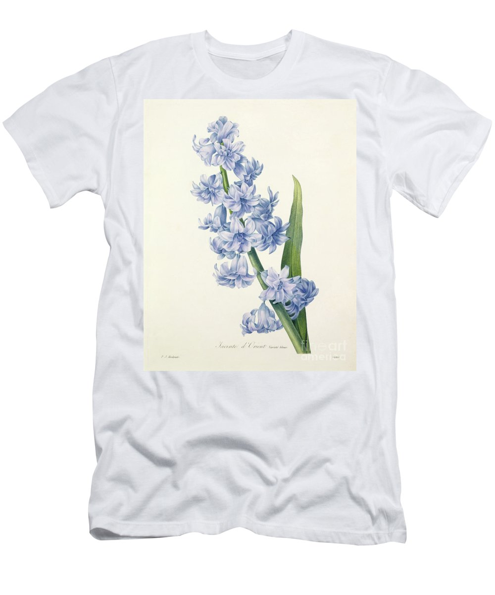 Hyacinthus T-Shirt featuring the drawing Hyacinth by Pierre Joseph Redoute