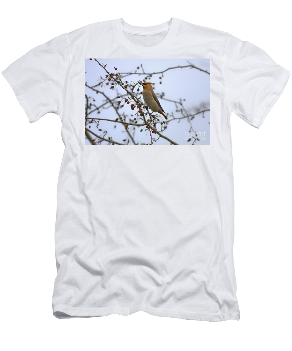 Bird Men's T-Shirt (Athletic Fit) featuring the photograph I Got It by Deborah Benoit