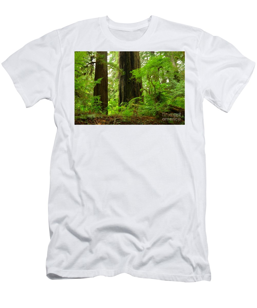 Trees Men's T-Shirt (Athletic Fit) featuring the photograph In The Land Of Giants by Jeff Swan