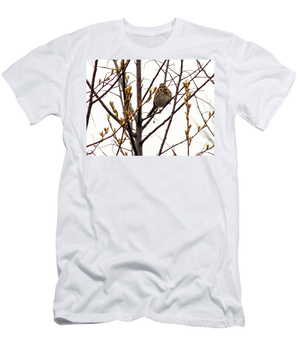 Bird Men's T-Shirt (Athletic Fit) featuring the photograph Intent Look by William Tasker