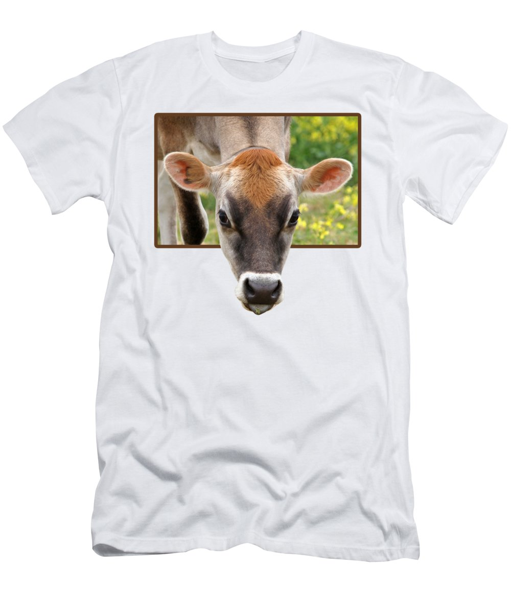 Cow Men's T-Shirt (Athletic Fit) featuring the photograph Jersey Fields Of Gold by Gill Billington