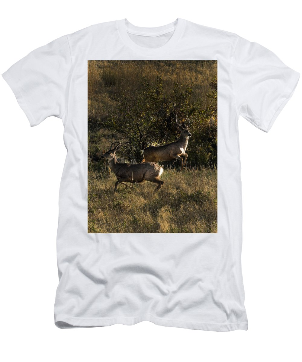Deer T-Shirt featuring the photograph Jumping deer by Roy Nierdieck