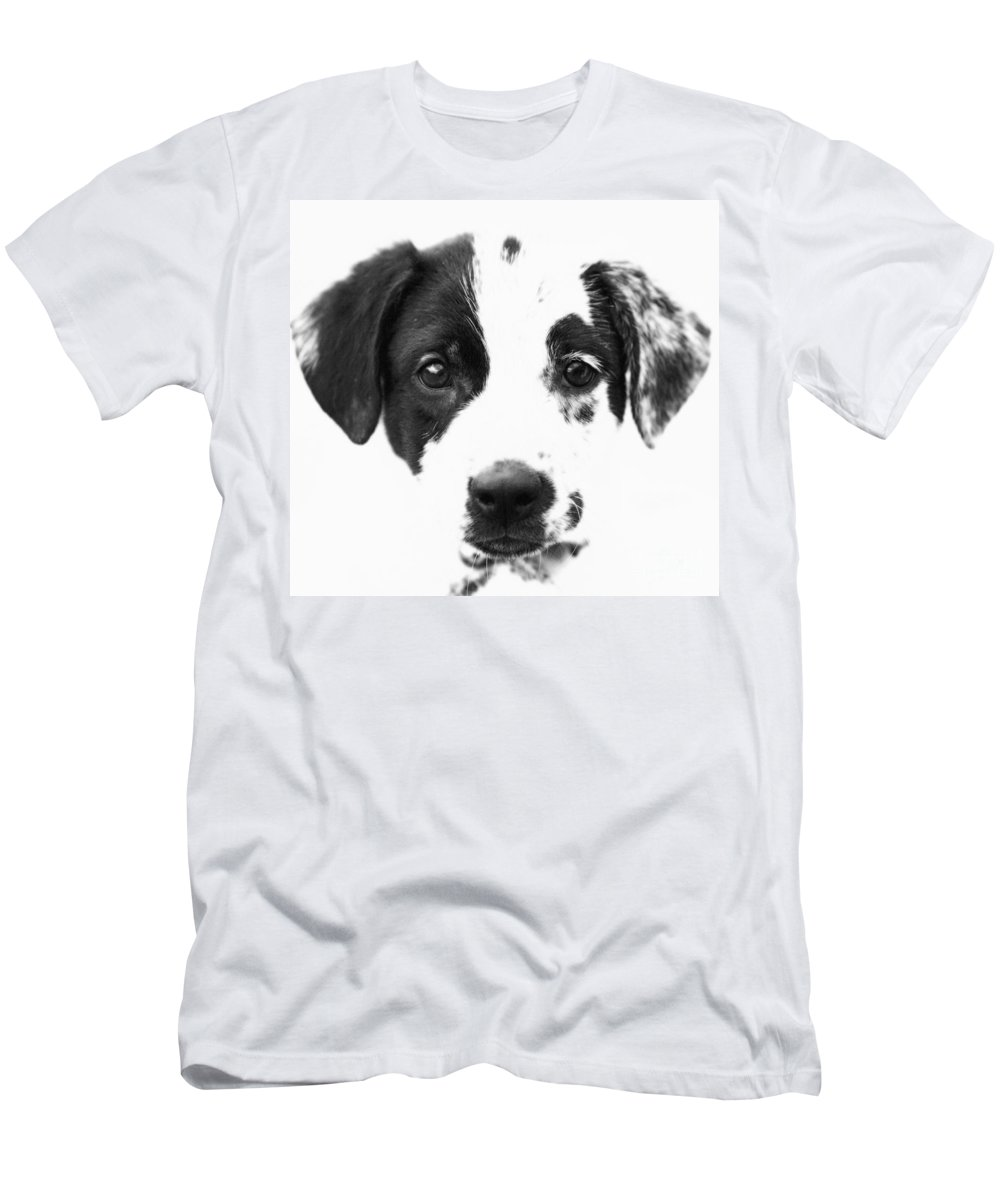 Dogs Men's T-Shirt (Athletic Fit) featuring the photograph Karma by Amanda Barcon