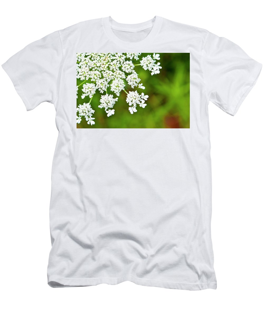 Queen Anne's Lace Men's T-Shirt (Athletic Fit) featuring the photograph Lace by Ginnie Lerch