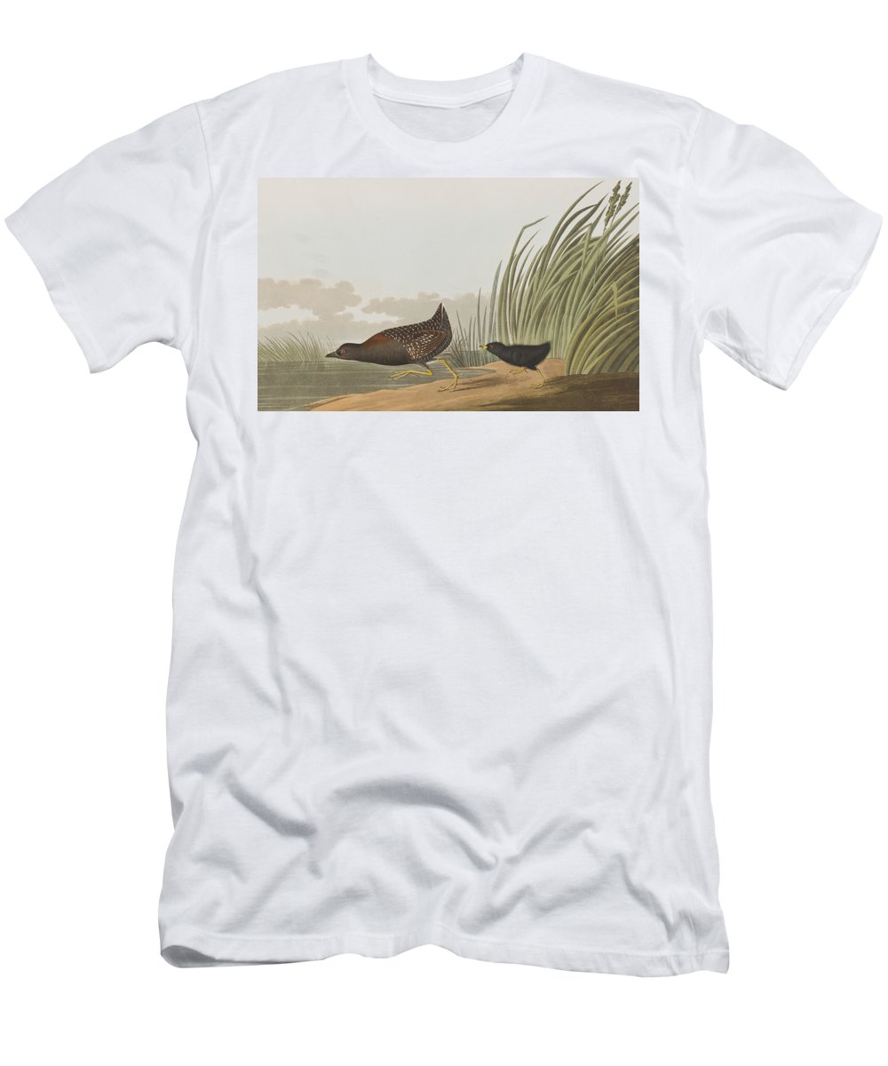 Least Water Hen Men's T-Shirt (Athletic Fit) featuring the painting Least Water Hen by John James Audubon