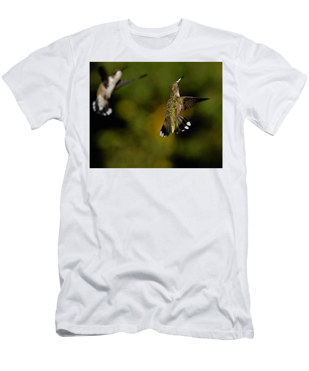 Hummingbird Men's T-Shirt (Athletic Fit) featuring the photograph Lets Dance by Dwight Eddington
