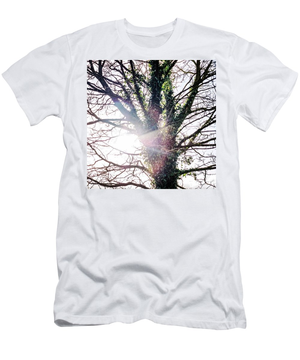 Haze T-Shirt featuring the photograph Life Springs Up Out Of The Dead Cold by Aleck Cartwright