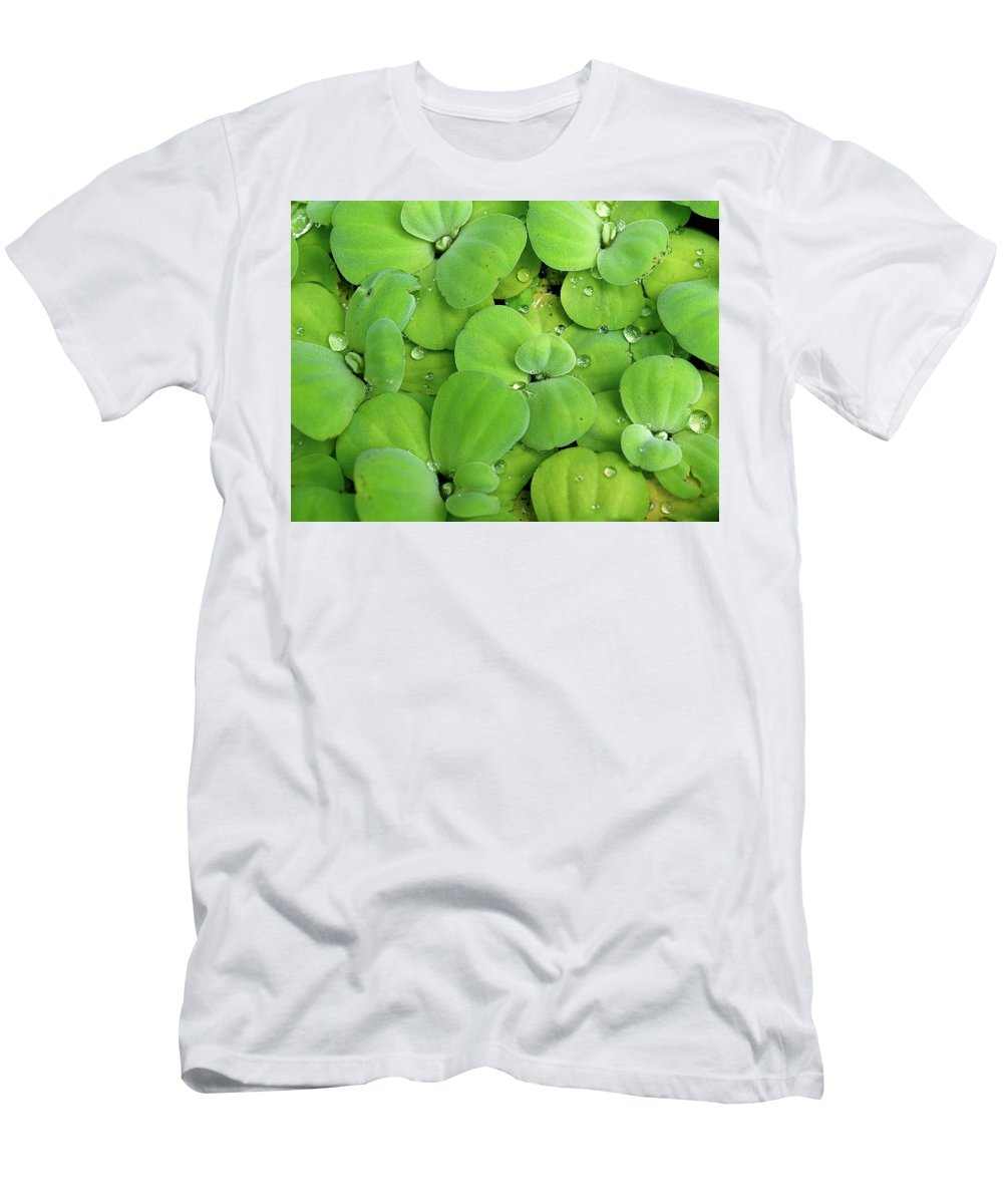 Water Lilies Men's T-Shirt (Athletic Fit) featuring the photograph Lilies by Cesar Caina