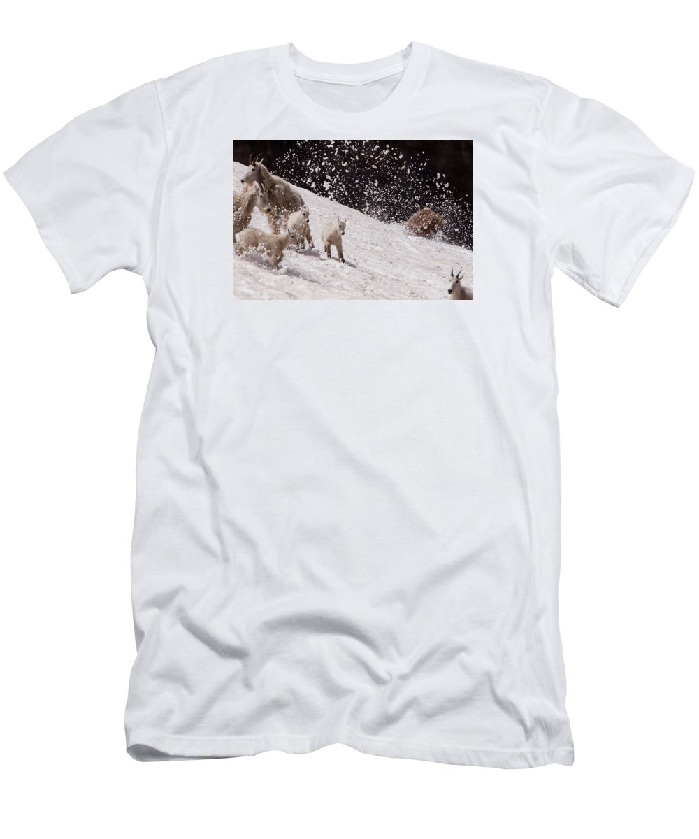 Mountain Goat Men's T-Shirt (Athletic Fit) featuring the photograph Look Out by Kent Keller